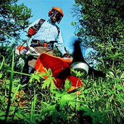 Le coupe bordure est l'outil de finition par excellence. Grâce à sa tête orientable, il permet d'avoir une pelouse impeccable et pourra se faufiler partout où la tondeuse ne peut pas aller: les clôtures, les bords des massifs et des clôtures, les allées…
